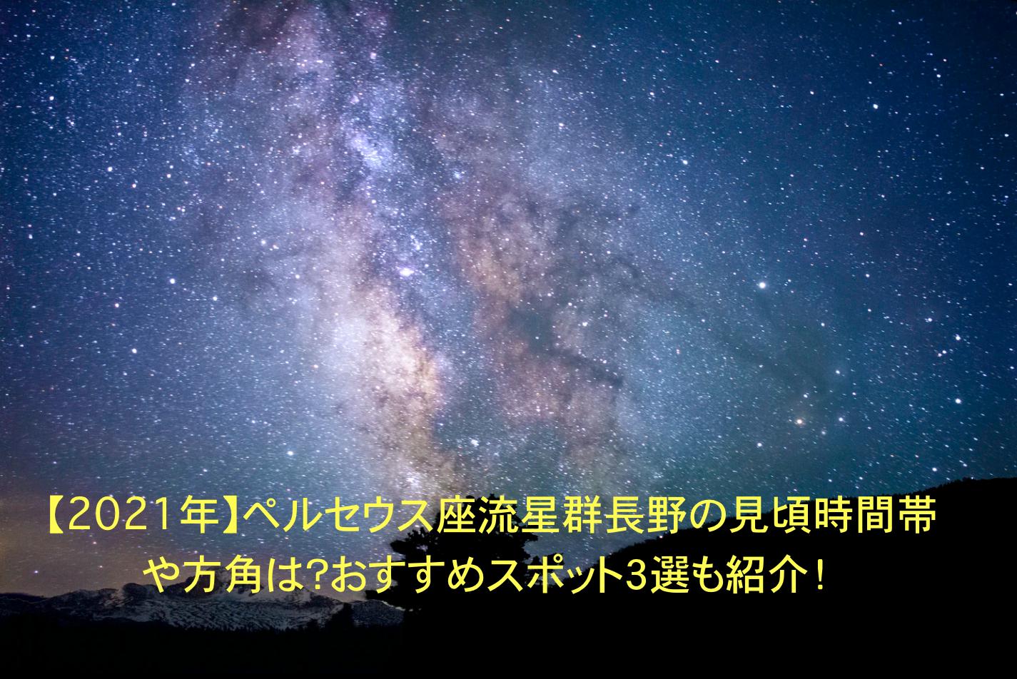 ペルセウス座流星群 長野 見頃時間帯 方角 おすすめスポット