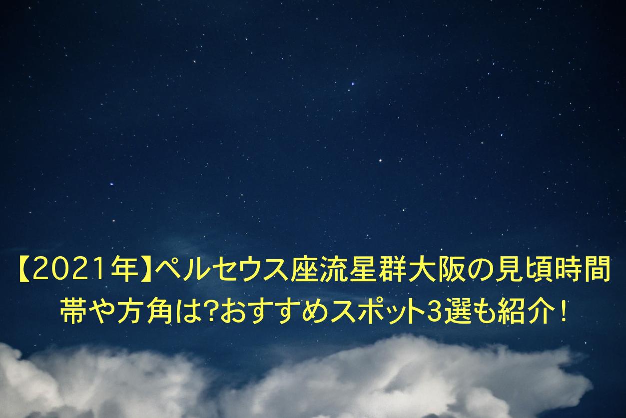 ペルセウス座流星群 大阪 見頃 時間帯 方角 おすすめスポット