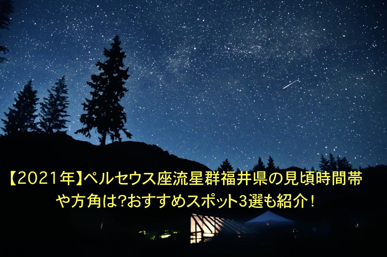 ペルセウス座流星群 福井県 見頃 時間帯 方角 オススメスポット