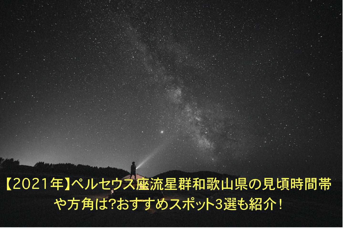 ペルセウス座流星群 和歌山県 見頃 時間帯 方角 おすすめスポット