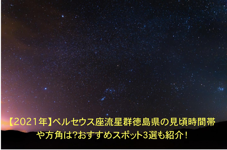 ペルセウス座流星群 徳島 見頃 時間帯 方角 おすすめスポット