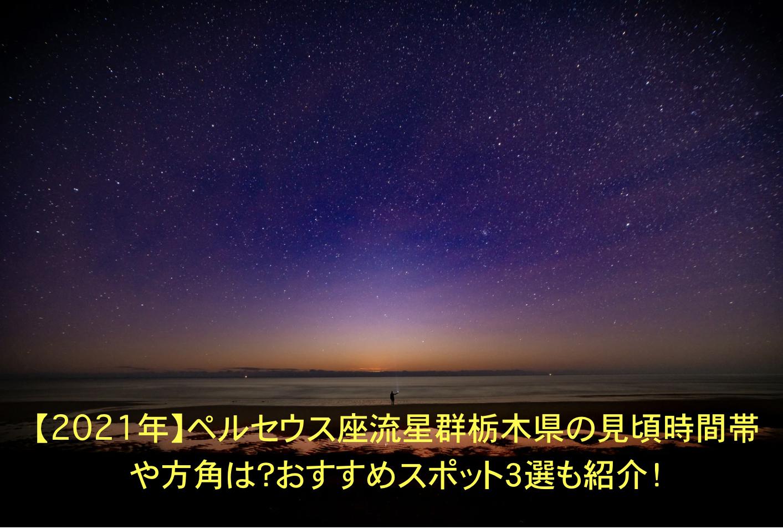 ペルセウス座流星群 栃木 見頃時間帯 方角 おすすめスポット