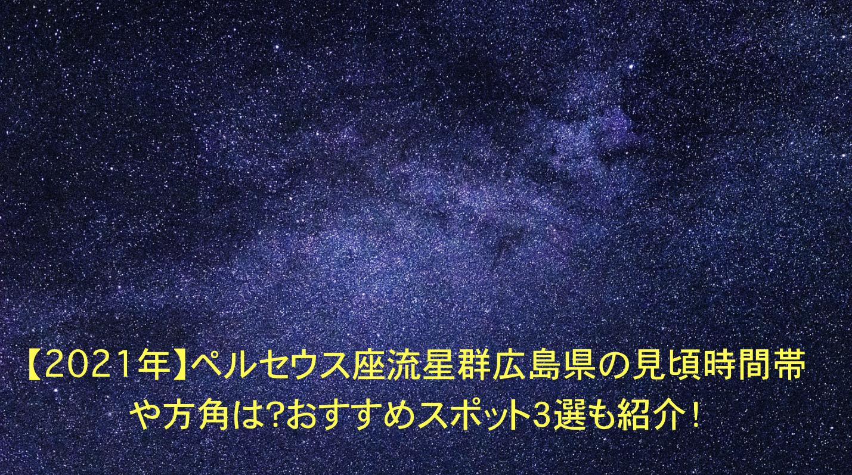 ペルセウス座流星群 広島 見頃時間帯 方角 おすすめスポット